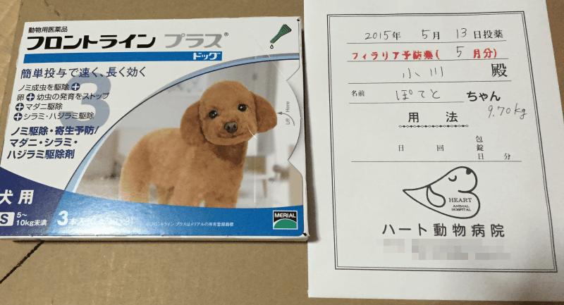 フェラリア予防、犬ノミ予防マダニ駆除薬