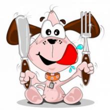 仔犬のドッグフード